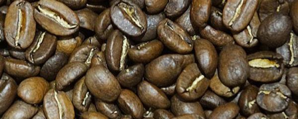 café en grain de Papouasie-Nouvelle-Guinée